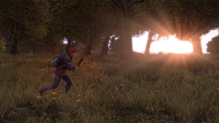 dayz-screenshot_1920.0_cinema_720.0